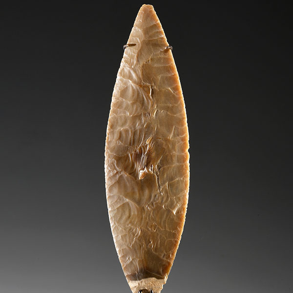 Illustration image for the European Prehistory subcategory of Archaeology items